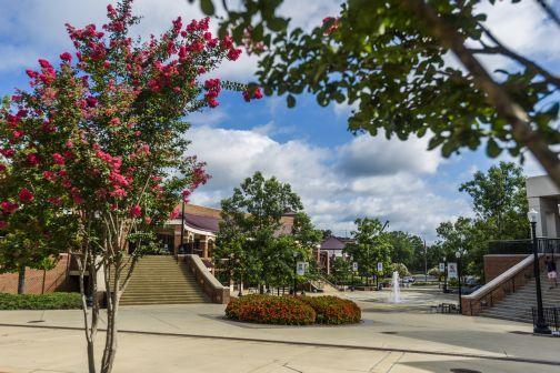 ELI UA fountain in spring